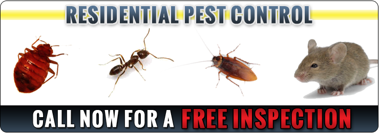 Pest Control Brooklyn | Pest Exterminator Brooklyn - banner